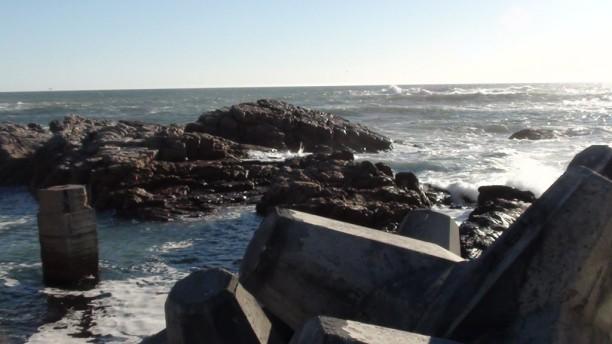 Lamberts Bay (24.08.2010) - 6