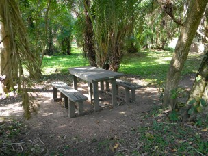 TC Robertson Nature Reserve