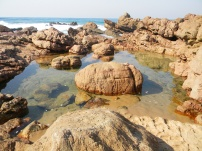 Hibberdene rockpools at low tide