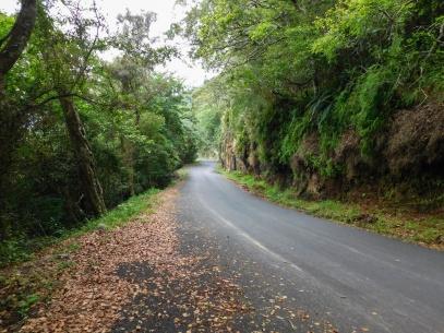 Entering the Oribi Gorge basin driving alongside the Umzimkulwane River