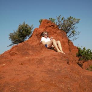 Little Red Desert 2
