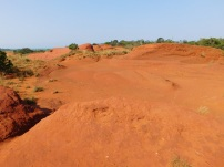 Little Red Desert 4